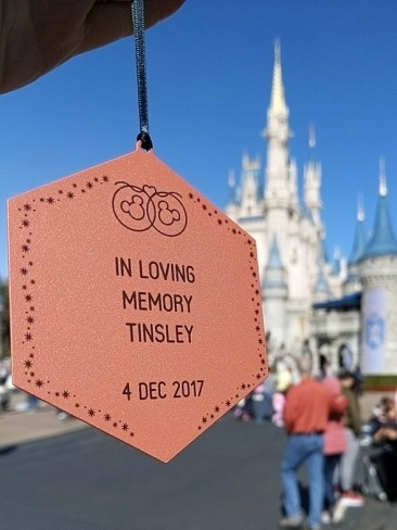 Tinsley Disney